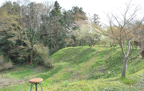 キートスの桜と庭