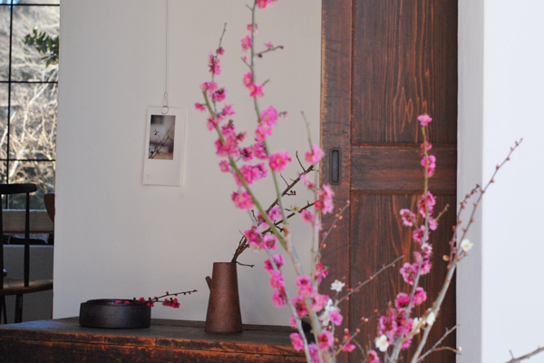 桃の花と梅の花