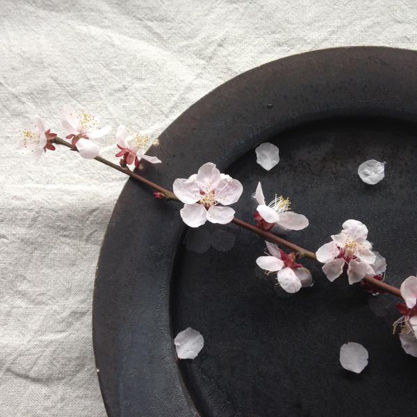 ギャラリーキートス花の会のお知らせ