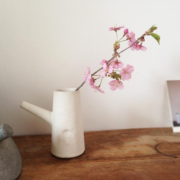 キートスの桜の花