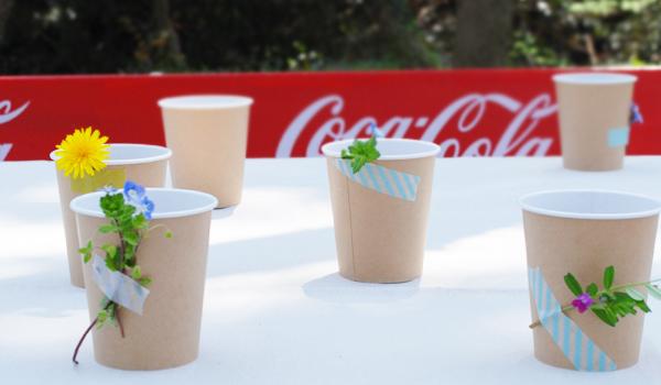 紙コップと草花