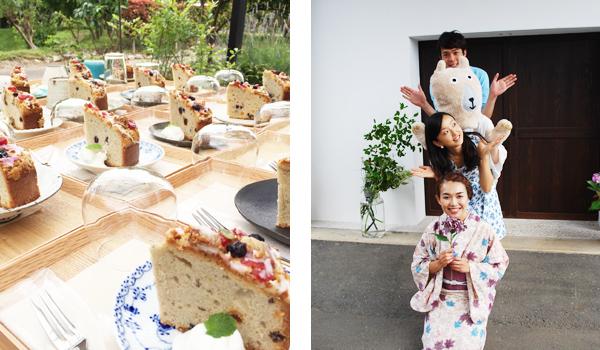 お茶菓子とおとなばさんとベンジャミン